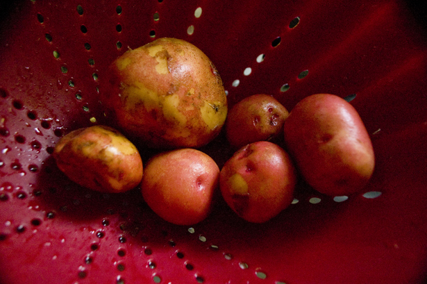 Crispy-smashed-potatoes1
